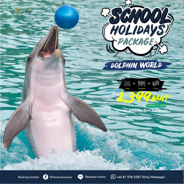 School Holidays Package with Dolphin World